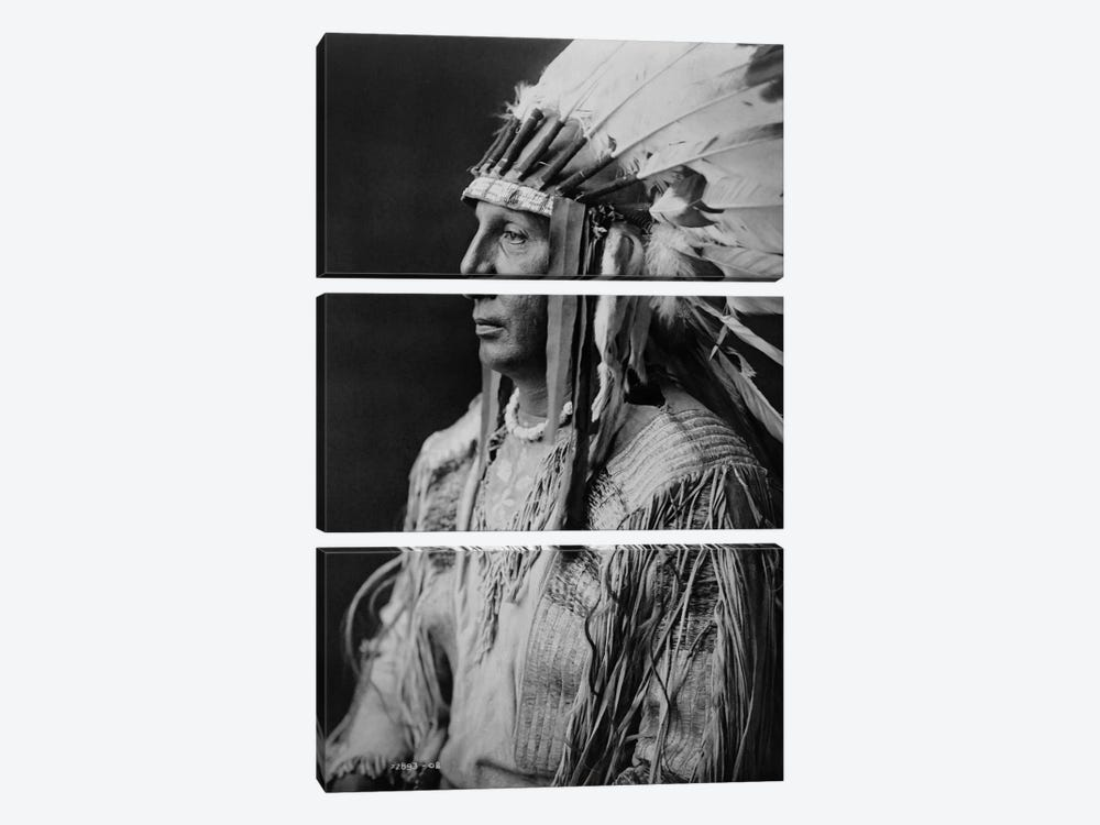 White Shield, Arikara by Print Collection 3-piece Art Print