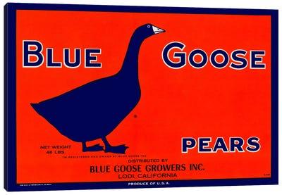 Blue Goose Pears Canvas Art Print