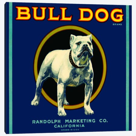 Bull Dog Brand Canvas Print #PCA54} by Print Collection Canvas Artwork
