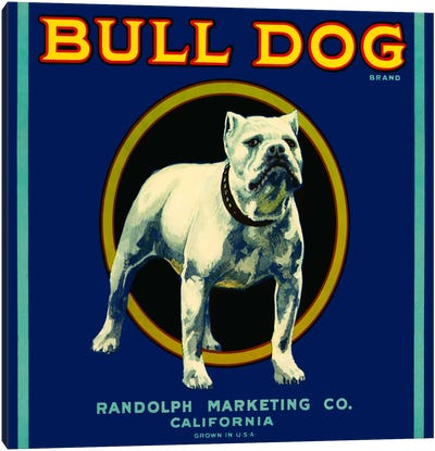 Bull Dog Brand Canvas Art Print