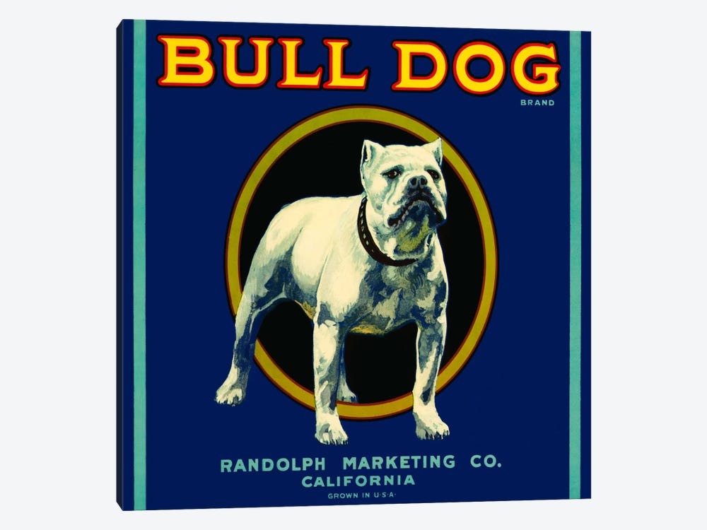 Bull Dog Brand by Print Collection 1-piece Canvas Art