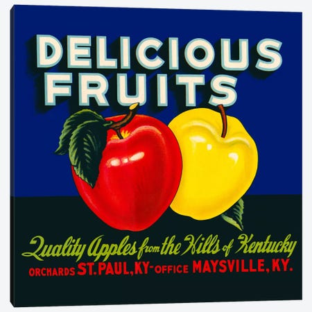 Delicious Fruits Canvas Print #PCA57} by Print Collection Canvas Artwork