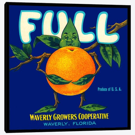 Full Florida Citrus Canvas Print #PCA62} by Print Collection Canvas Artwork
