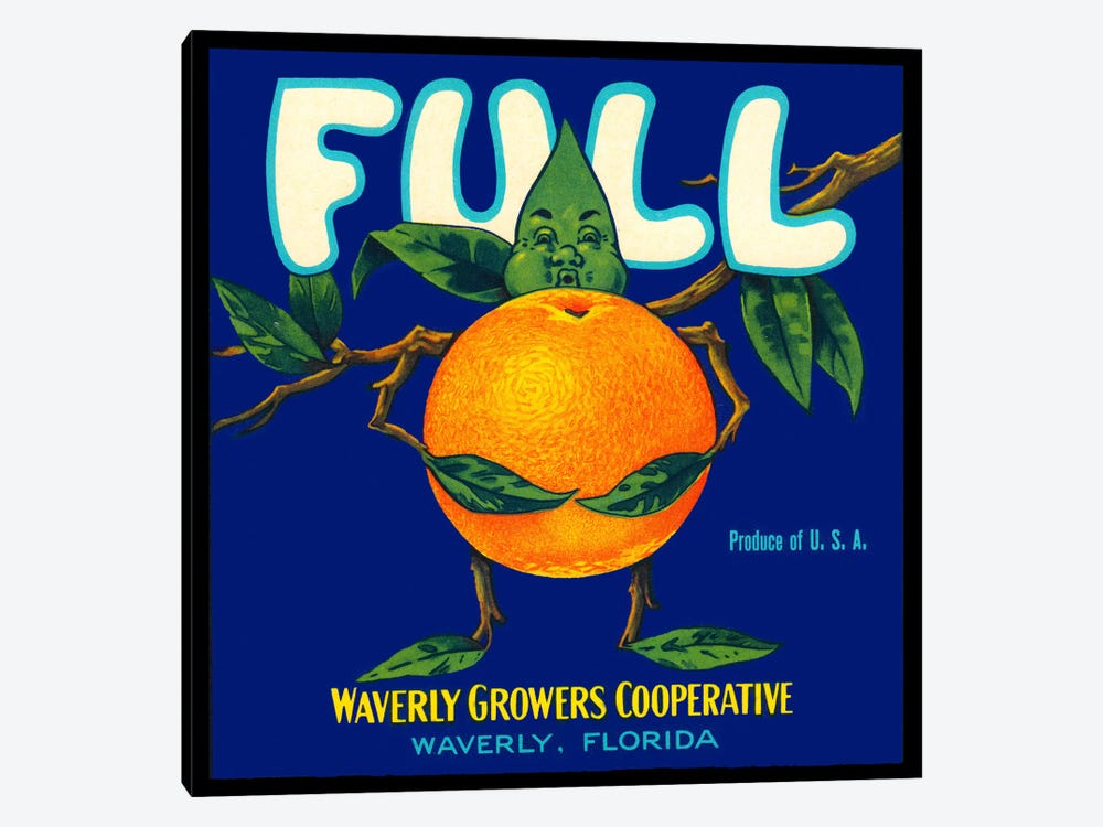 Full Florida Citrus by Print Collection 1-piece Canvas Print