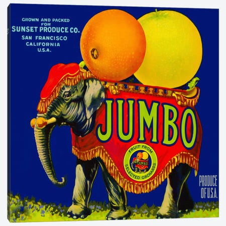 Jumbo Orange and Grapefruit Canvas Print #PCA65} by Print Collection Canvas Print