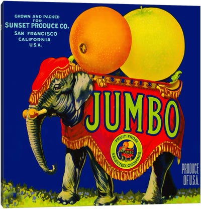 Jumbo Orange and Grapefruit Canvas Art Print