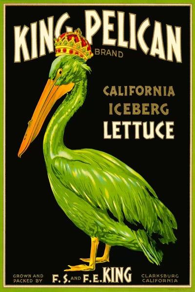 7803.King Pelican.pelican com crown.iceberg alface.POSTER.art decoração de parede