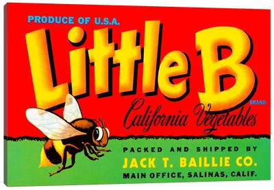 Little B Brand California Vegetables Canvas Art Print