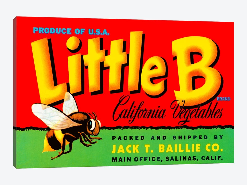 Little B Brand California Vegetables by Print Collection 1-piece Canvas Wall Art