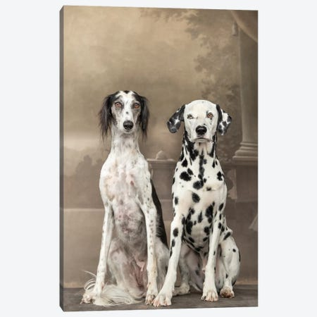 Dalmatian And Saluki 2018 Italy 3-Piece Canvas #PCI14} by Paul Croes Canvas Wall Art