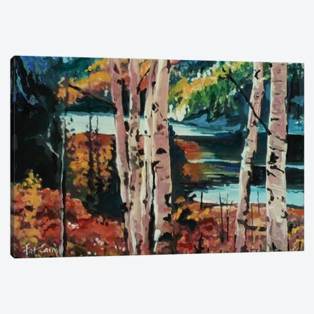 Fall Colors Canvas Print #PCL11} by Patricia Carroll Canvas Artwork