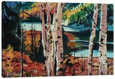 Fall Colors Canvas Art Print