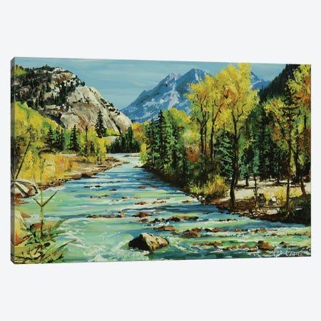 Glacial Stream Canvas Print #PCL16} by Patricia Carroll Art Print