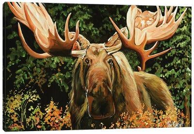 Mangy Moose Canvas Art Print