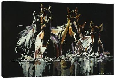 Midnight Crossing Canvas Art Print