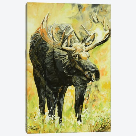 Moose On The Loose Canvas Print #PCL23} by Patricia Carroll Canvas Art Print