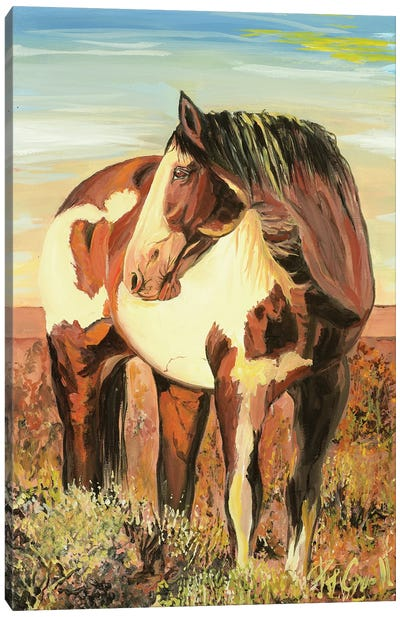Paint Horse Canvas Art Print