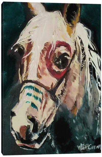 Painted Pony Canvas Art Print