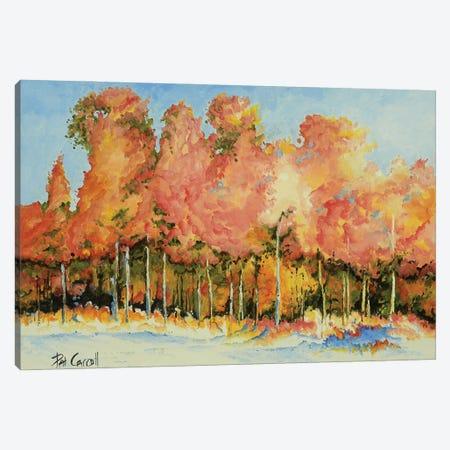 Autumn Trees Canvas Print #PCL2} by Patricia Carroll Canvas Art Print