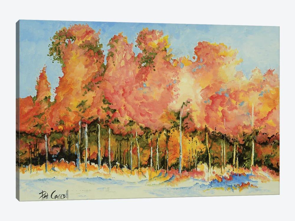 Autumn Trees by Patricia Carroll 1-piece Art Print