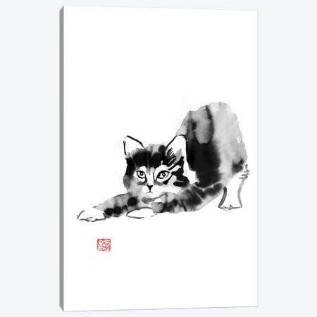 Morning Cat Canvas Print #PCN107} by Péchane Art Print
