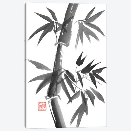 Bamboo Canvas Print #PCN10} by Péchane Canvas Artwork
