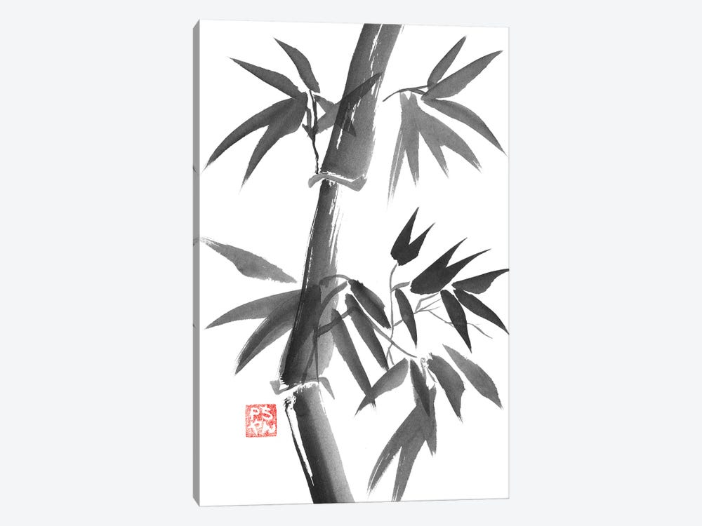 Bamboo by Péchane 1-piece Canvas Art