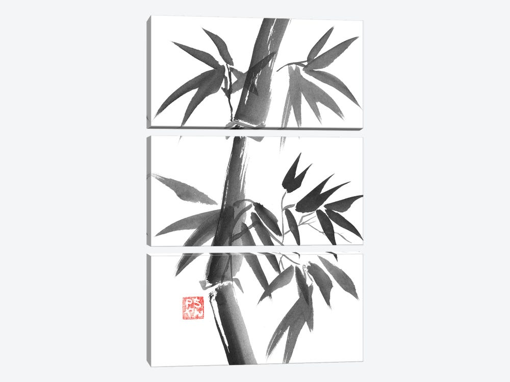 Bamboo by Péchane 3-piece Canvas Art