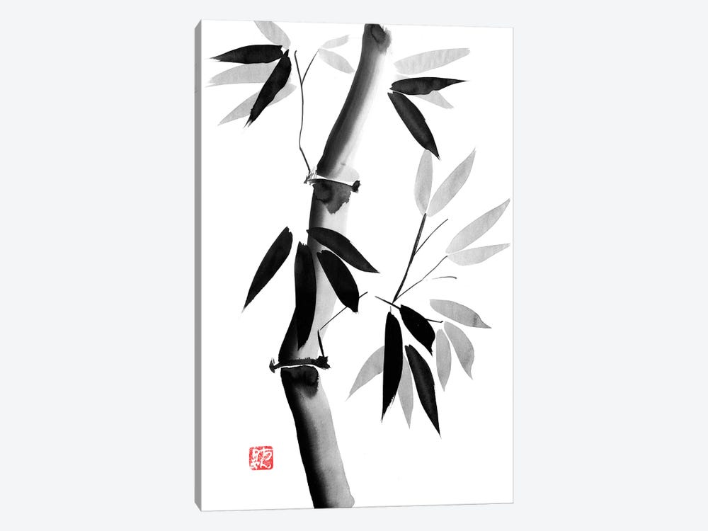 Old Bamboo by Péchane 1-piece Canvas Artwork