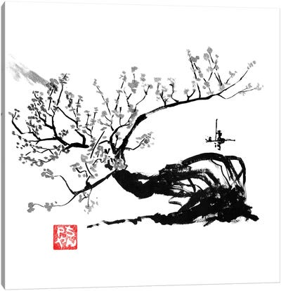 Old Tree Canvas Art Print