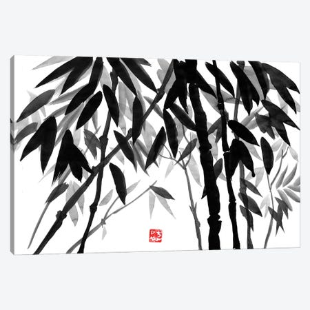 Bamboo Forest Canvas Print #PCN11} by Péchane Canvas Artwork