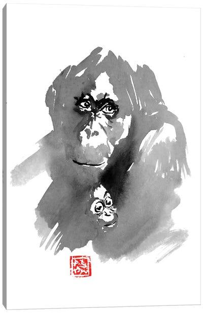 Orangutan Family Canvas Art Print