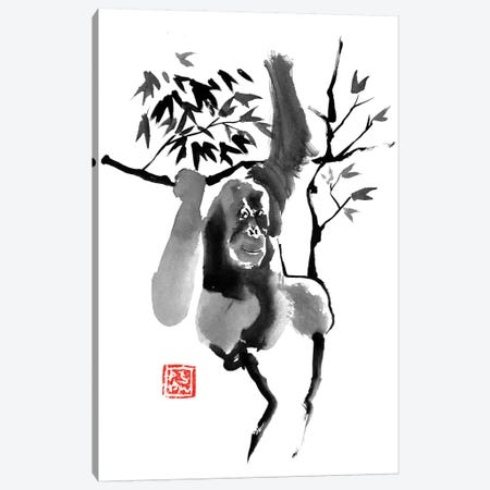Orangutan In Tree 3-Piece Canvas #PCN123} by Péchane Canvas Art