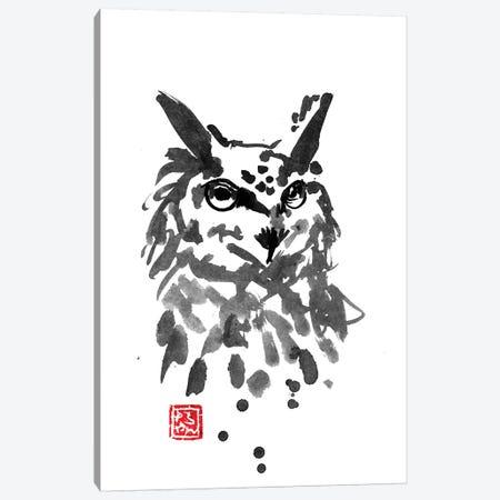 Owl Canvas Print #PCN124} by Péchane Art Print