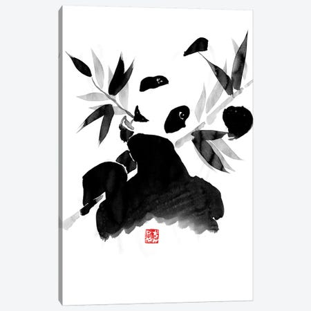 Panda Canvas Print #PCN126} by Péchane Canvas Art Print