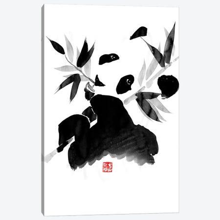 Panda Canvas Print #PCN126} by Péchane Canvas Art Print