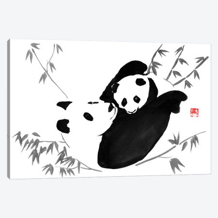 Panda Family Canvas Print #PCN127} by Péchane Art Print
