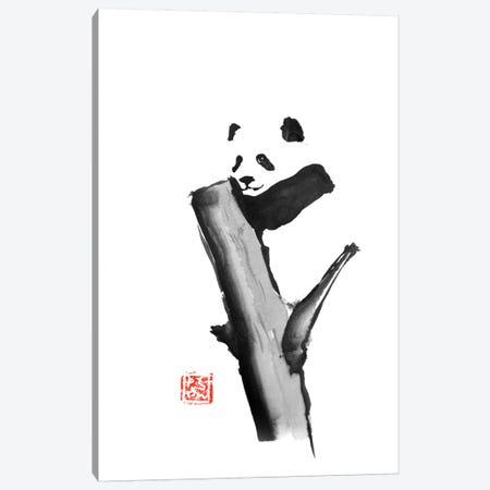 Panda On A Tree Canvas Print #PCN129} by Péchane Canvas Art