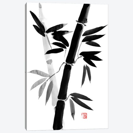 Black Bamboo Canvas Print #PCN12} by Péchane Canvas Artwork