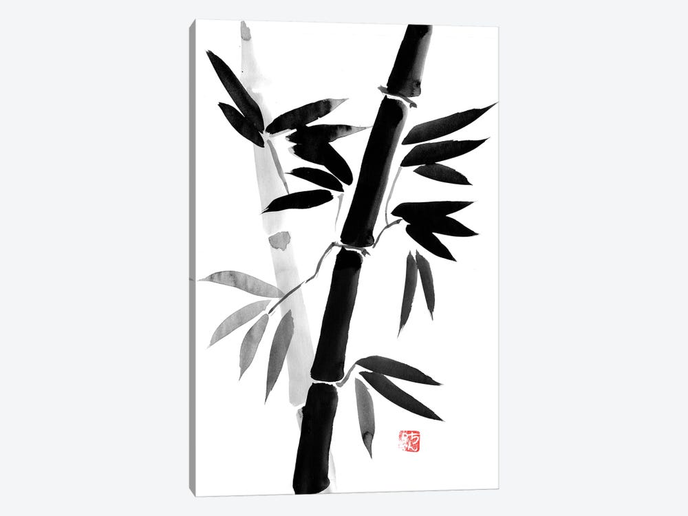Black Bamboo by Péchane 1-piece Canvas Art