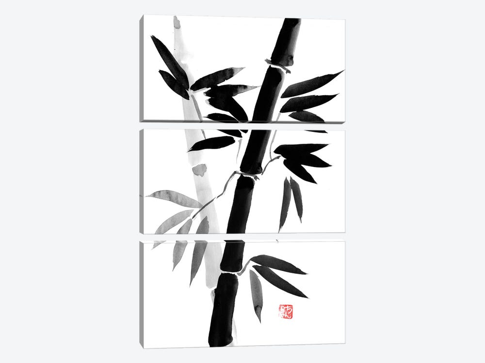 Black Bamboo by Péchane 3-piece Canvas Art