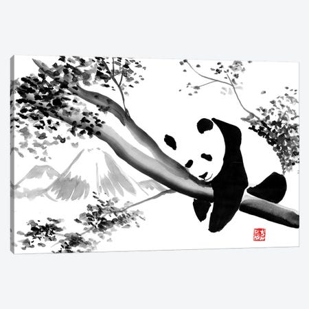 Panda's Tree Canvas Print #PCN130} by Péchane Canvas Print