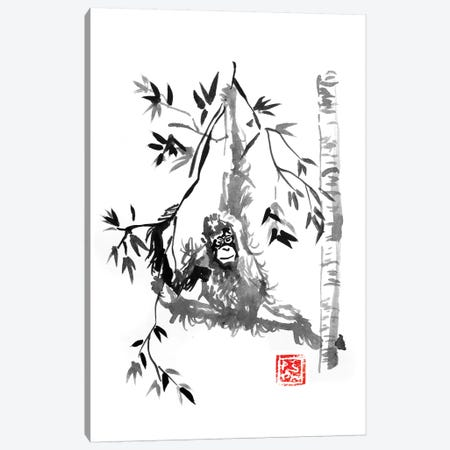 Playing Canvas Print #PCN134} by Péchane Canvas Art