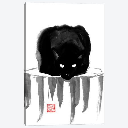 Black Cat On Wood Canvas Print #PCN13} by Péchane Canvas Art