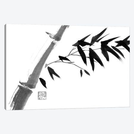 River Bamboo Canvas Print #PCN142} by Péchane Canvas Artwork
