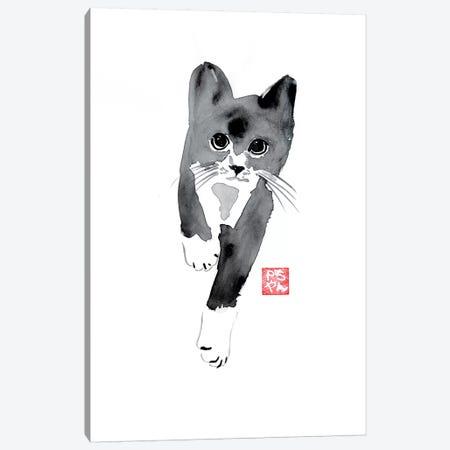 Running Cat Canvas Print #PCN143} by Péchane Canvas Art
