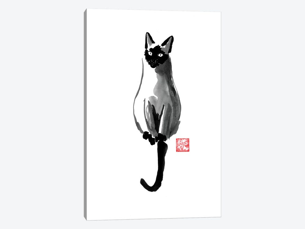 Siamese by Péchane 1-piece Canvas Wall Art