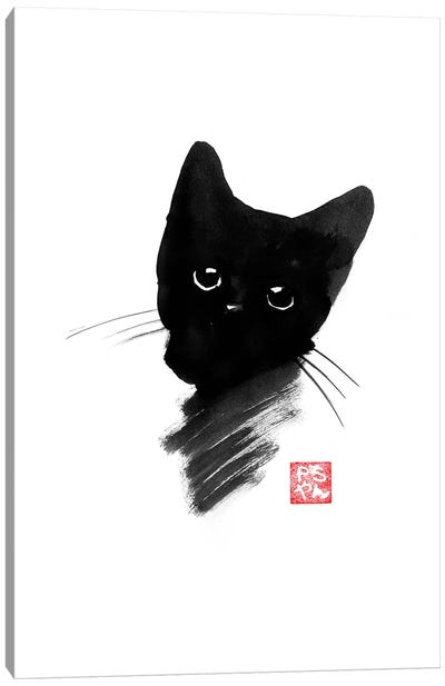 Small Cat II Canvas Art Print