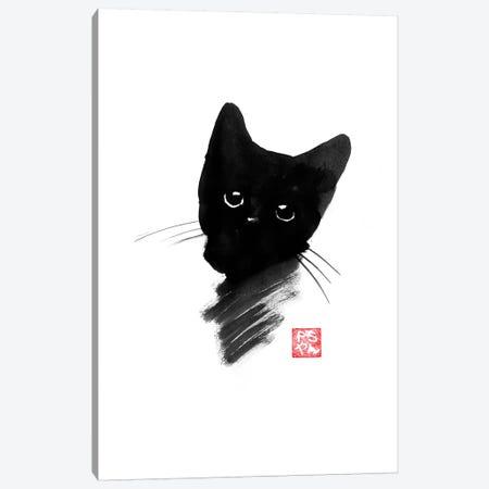 Small Cat II Canvas Print #PCN153} by Péchane Canvas Art Print