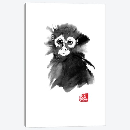 Small Monkey Canvas Print #PCN154} by Péchane Canvas Wall Art